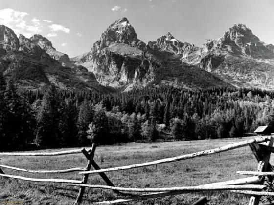 Siyah beyaz 10 adet manzara fotoğrafı