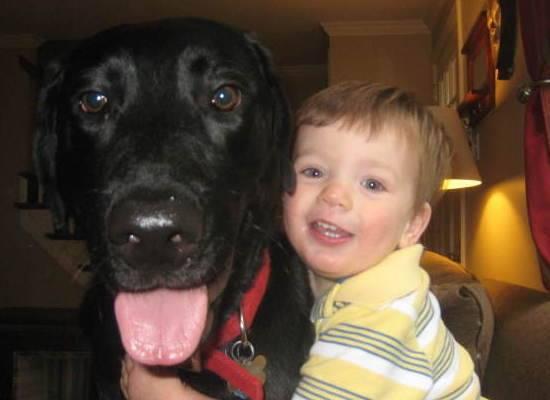 Çocuklar ve hayvanlar arasındaki sevgi