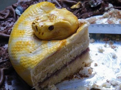 Sizce resimdeki bir yılan mı